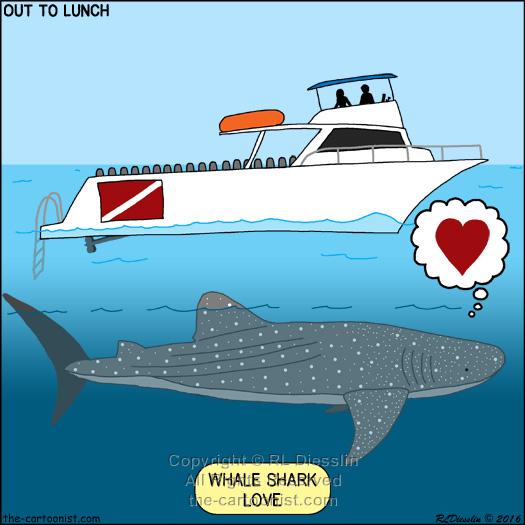 Whale Shark Love Otl Cartoon February 3 2016